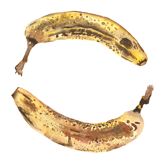 Brown_banana_rescan_webres.jpg