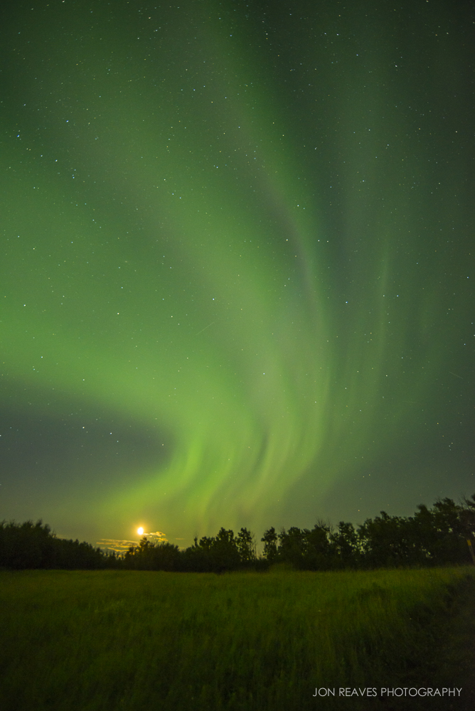 Northern Lights over Hayburger Trail, Elk Island National Park (18mm, f3.5, 8 sec, ISO 800)