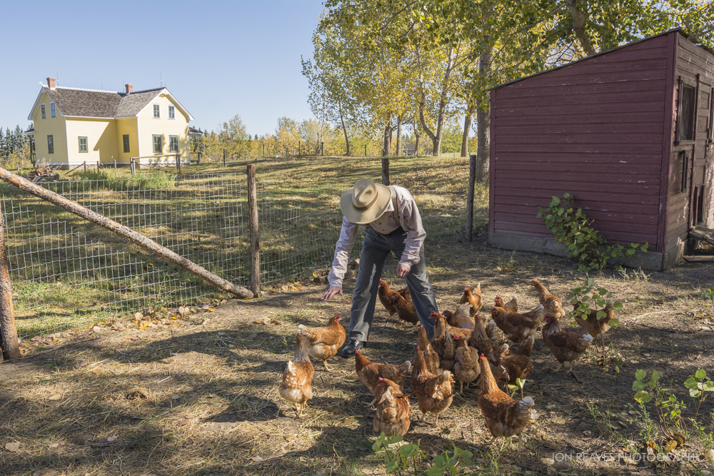 Young Farmer with Chickens, Ukrainian Cultural Heritage Village, Alberta