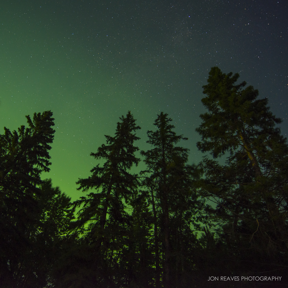 Northern Lights over Northwoods, Elk Island NP