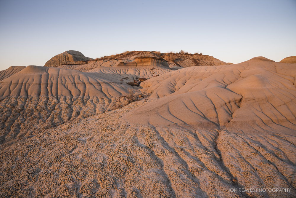Pink morning light bathes the Badlands, Dinosaur Provincial Park, Alberta
