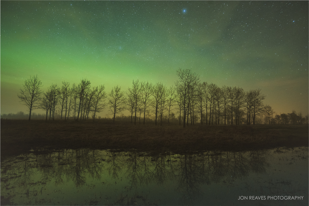 Northern Lights (Aurora Borealis) in May, Elk Island National Park (18mm, f3.5, 20 sec, ISO 2500)