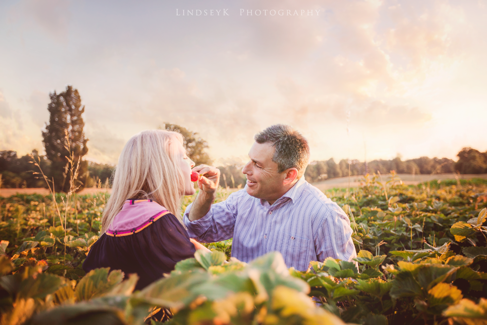 strawberry-field-engagement.png