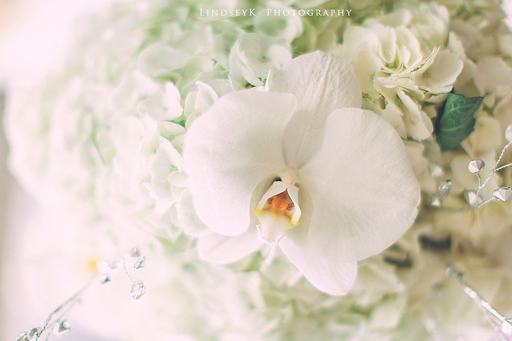 orcrhid-bouquet.jpg