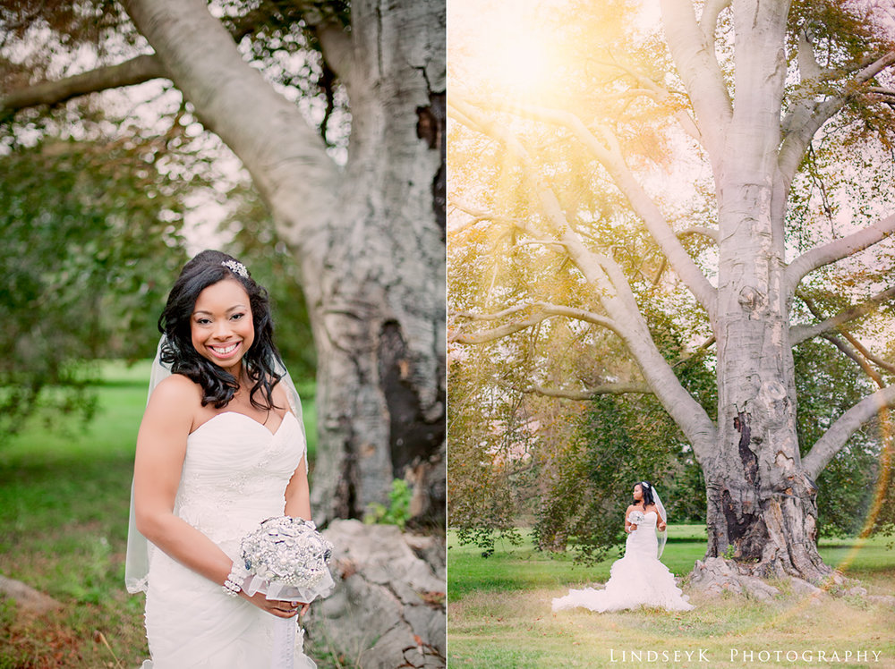 bridal-portrait-large-tree