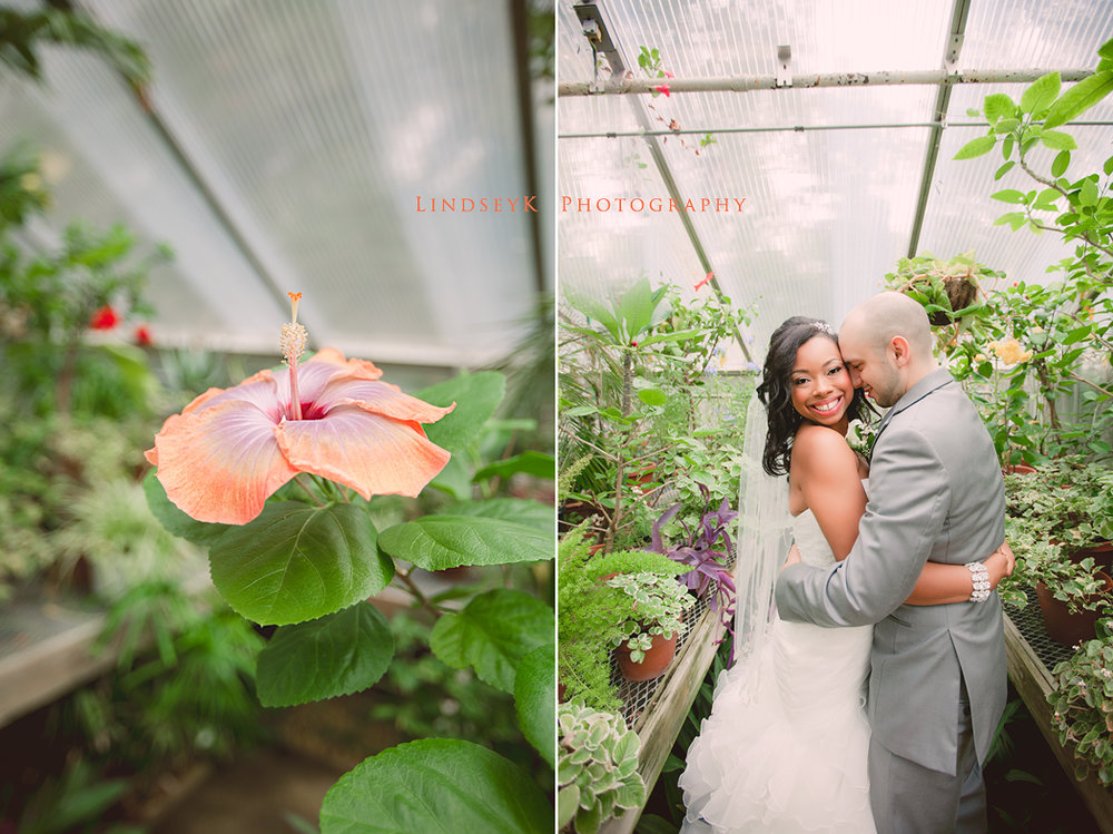 david-stowe-greenhouse-wedding