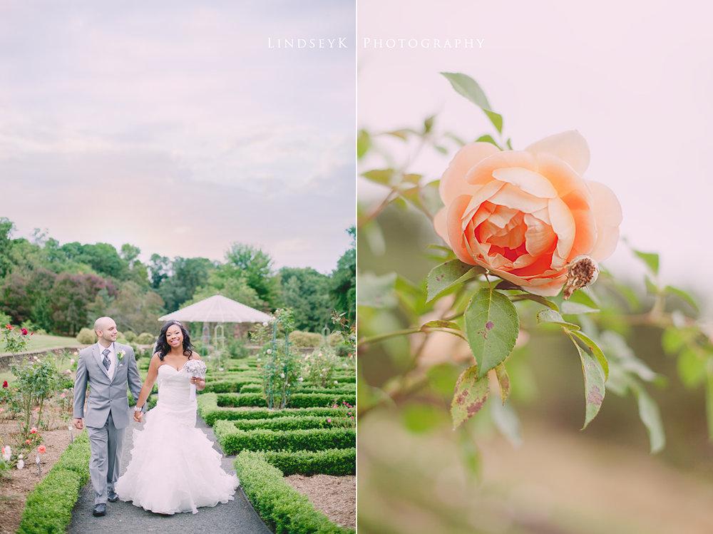 vintage-garden-charlotte-wedding