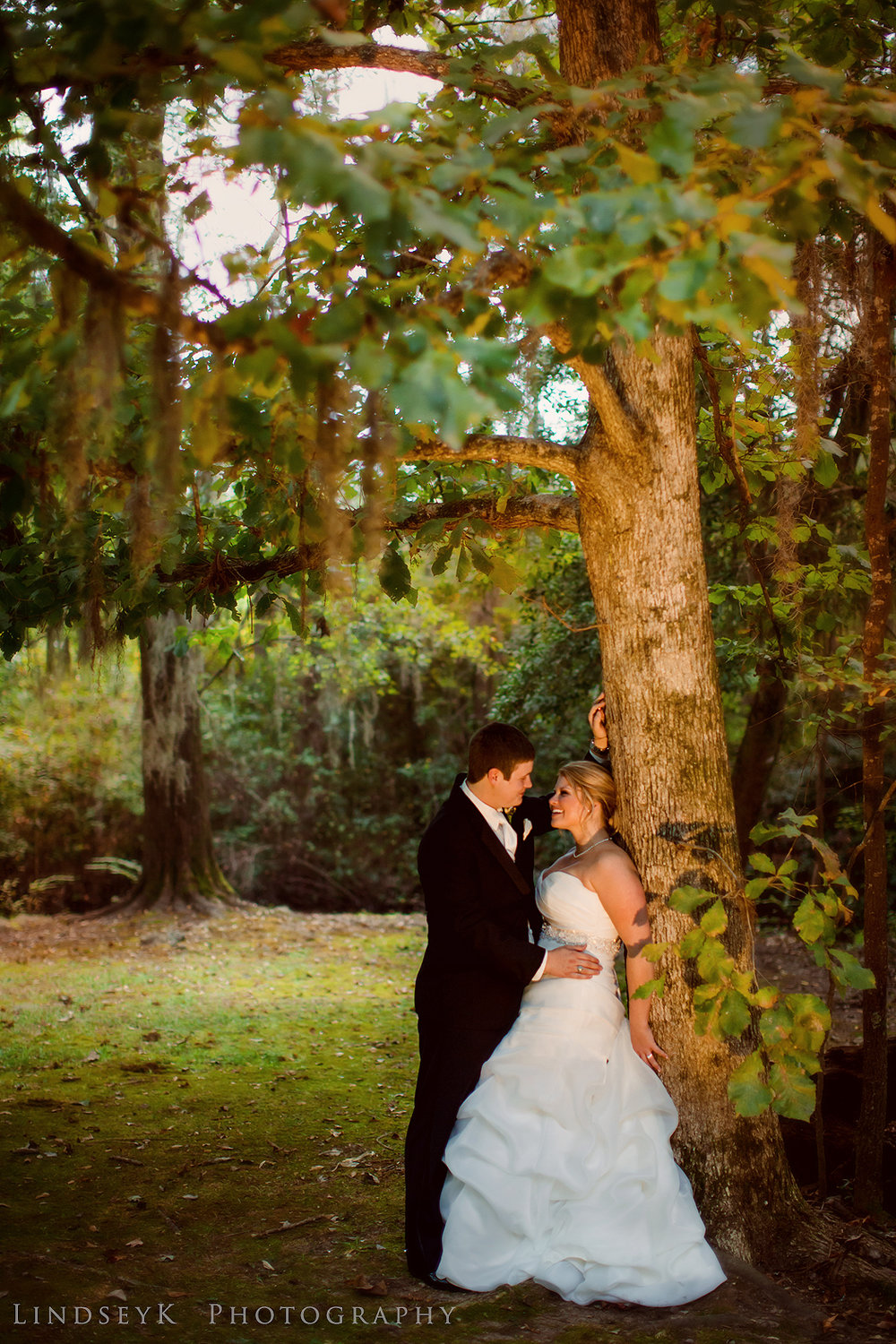 oak-tree-wedding