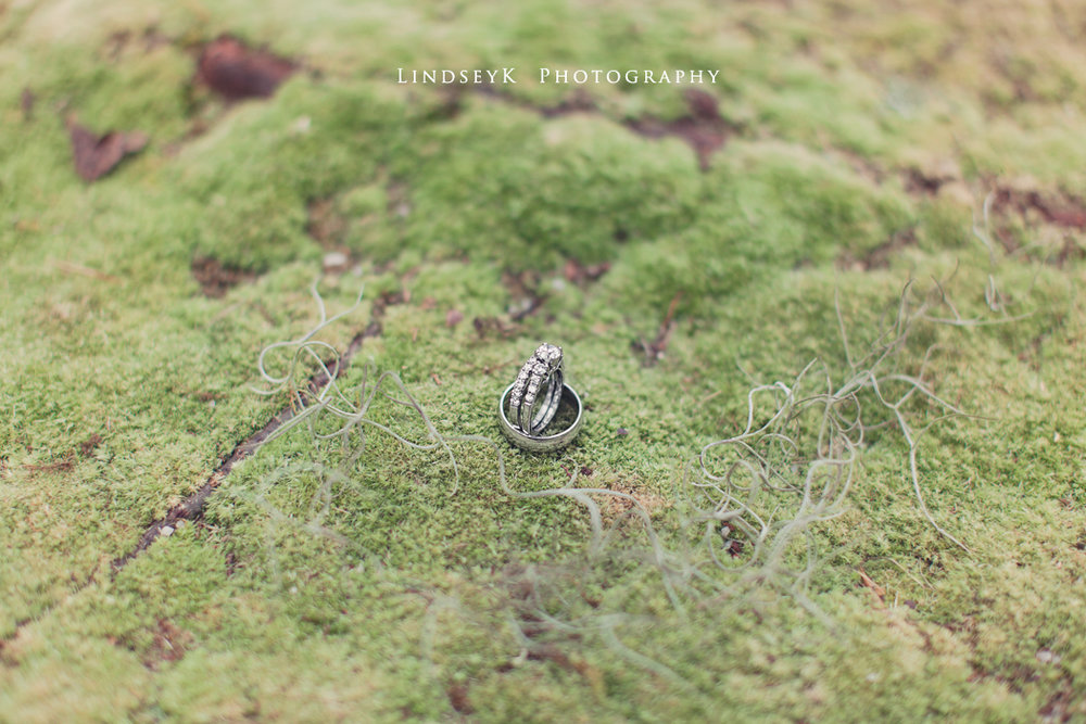 ring-shot-on-moss