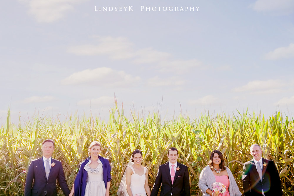 cornfield-bridal-party.jpg