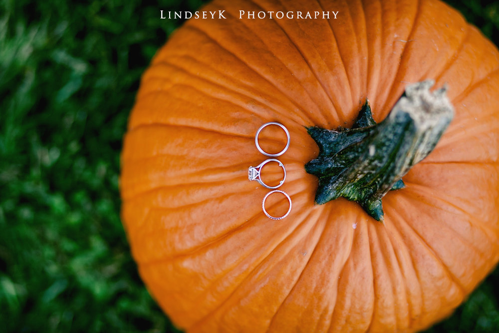 pumpkin-ring-shot.jpg