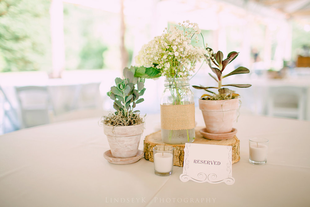 succulent-centerpieces.jpg