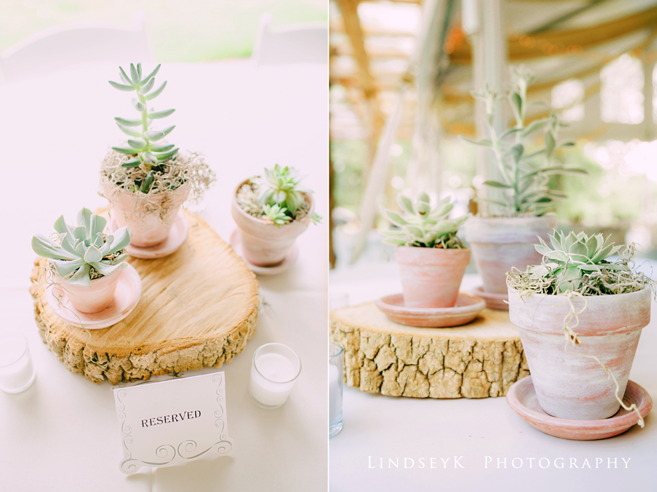 wedding-succulents.jpg