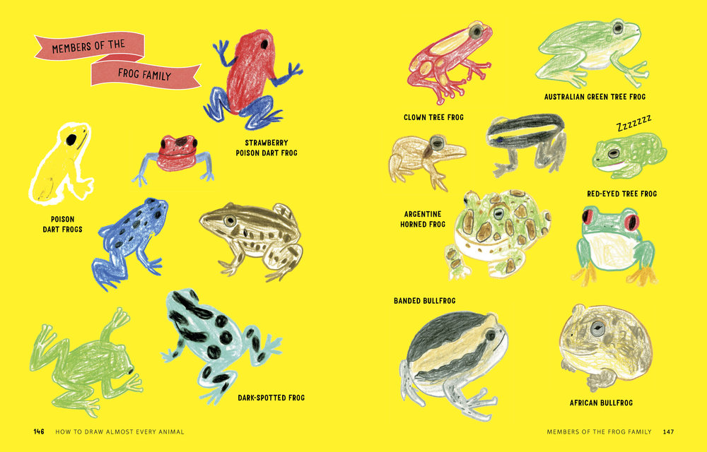 How to Draw Almost Every Animal 146.147.jpg