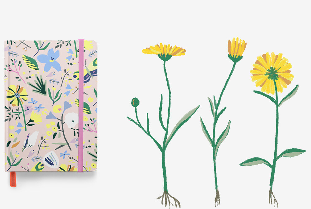 Marigoals Planners - Marigoals is a company that contacted us to help with their Kickstarter campaign to raise money for plantable notebooks and planners. Unique feature is that the paper is plantable and the covers are refillable and vegan.