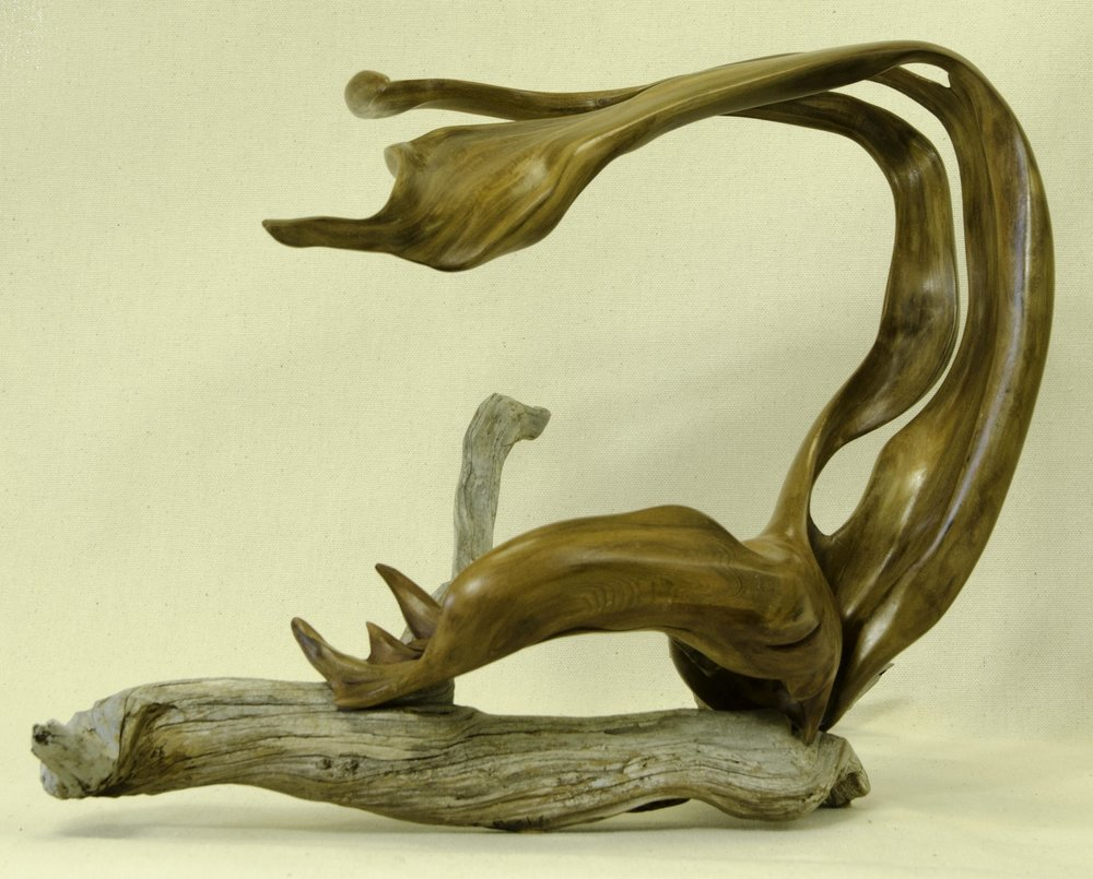 Nesting Swan by Tuttie Peetz