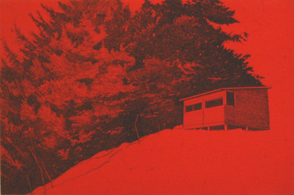 BirdHide (Red)