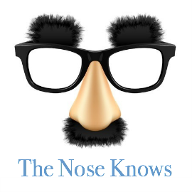 seachange-resources-the-nose-knows.png