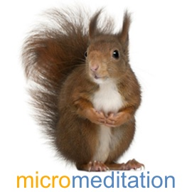 SeaChange-Resources-micromeditation-wp.jpg
