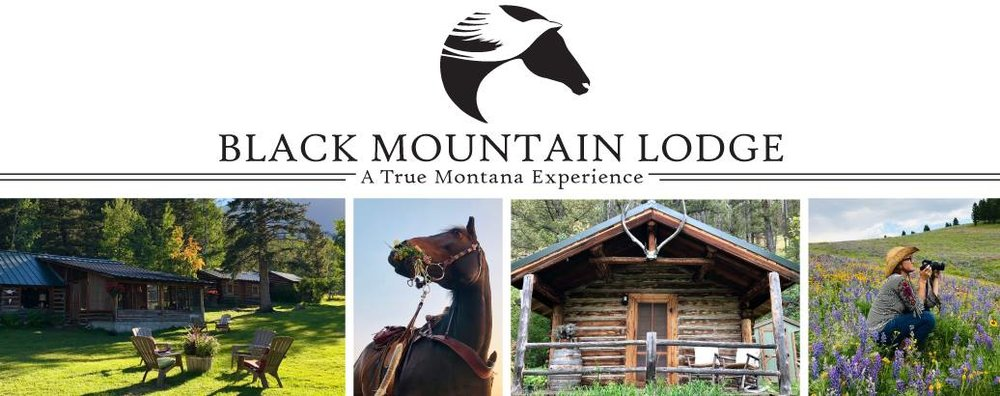 Black Mountain Lodge is a historic homestead that became a successful gold mining claim, then a productive dairy farm and is now an exclusive venue for corporate retreats. Enjoy log cabin comfort and rustic elegance in the privacy of your own meadow completely surrounded by National Forest. There's gold in these hills. Come find it for yourself!