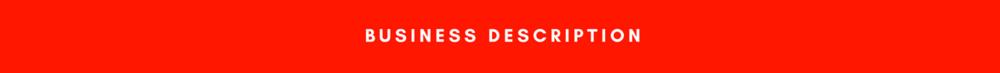 Business Description Handyman listing for sale