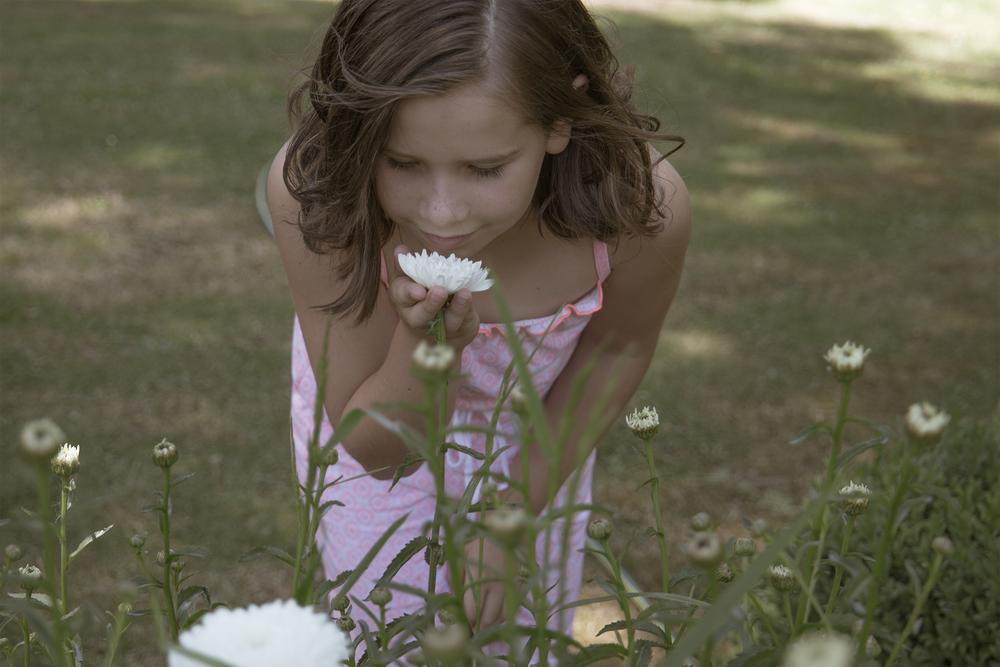 jessi flower 6x4.png