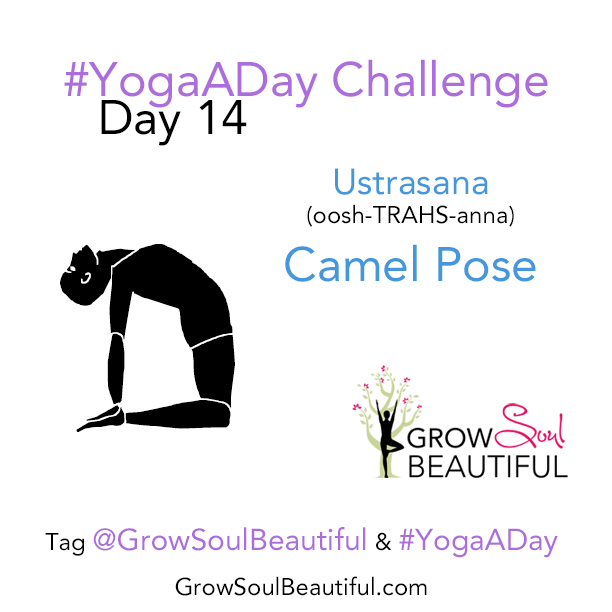 June Yoga Day 14