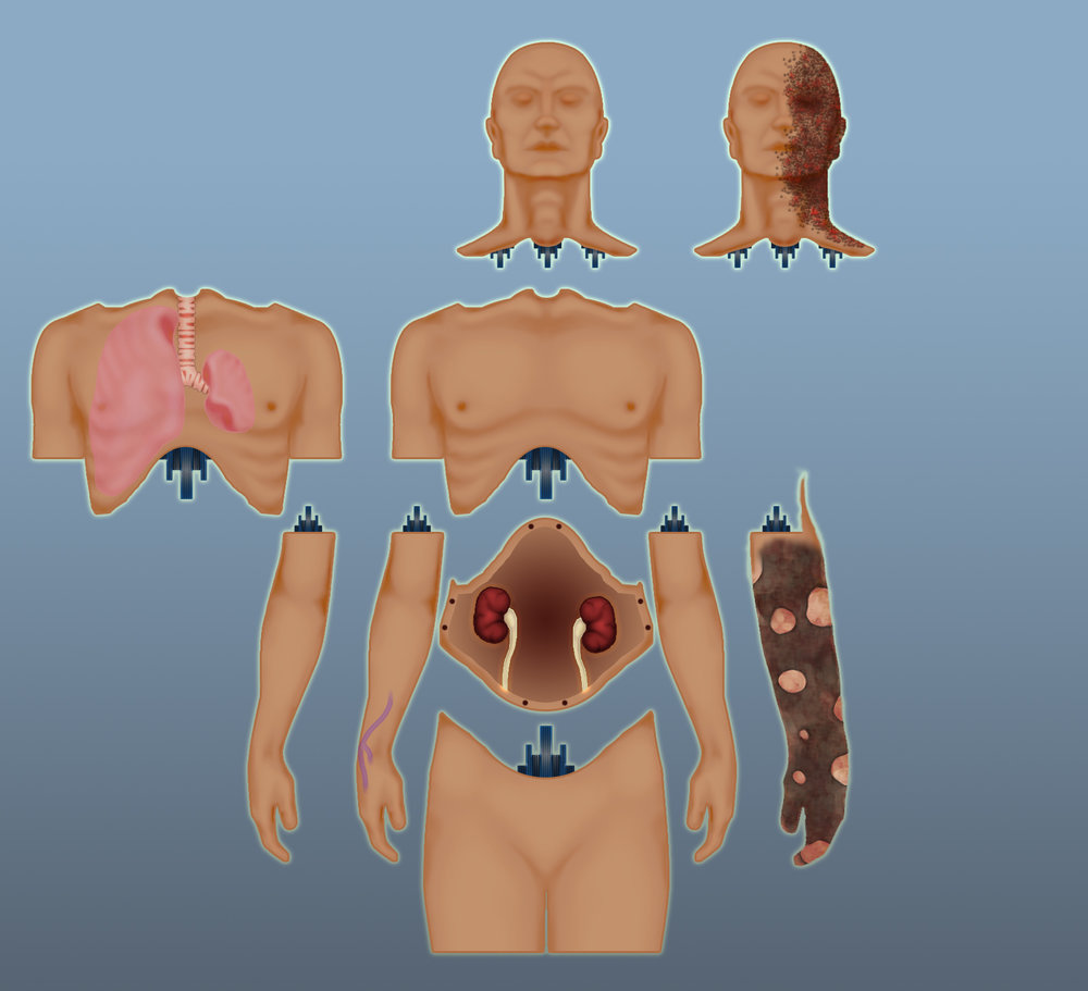 Advanced Modular Manikin (AMM)