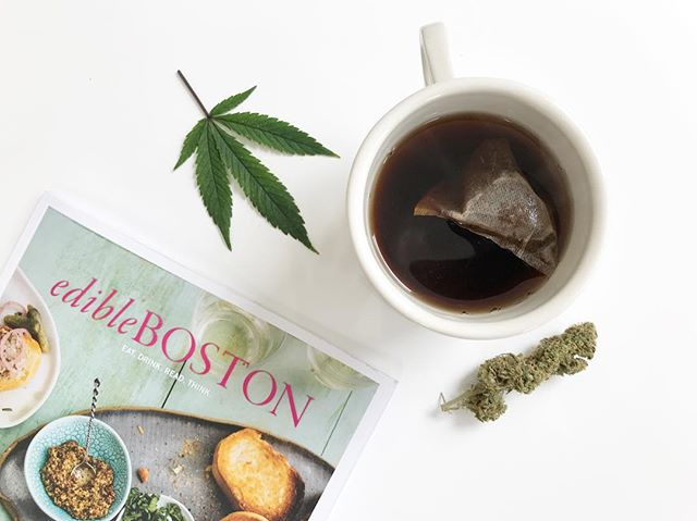 "Sunday morning read: ""Potted Plants"" in the spring issue of @edibleboston. Link in bio 👆 . . . . . . . #cannabiscommunity #HomegrownMA #classycannabis #cannabis #marijuanagrowers #growyourown #cannabisgrowers #maryjane #marijuana"
