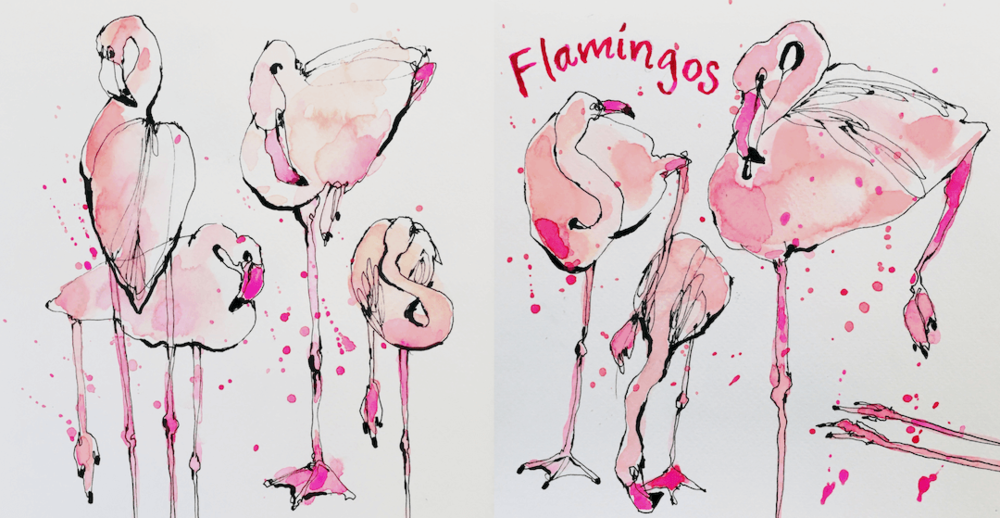 10. Flamingos.png