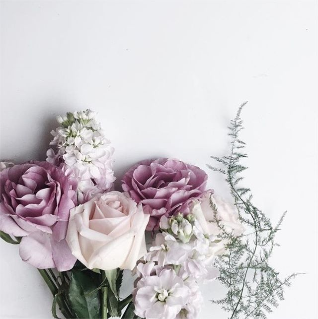 Aaaand, we're back! The Dallas Bridal Market was a huge success, and we CAN'T WAIT to show you what we're adding to the collection! In the meantime, here's some fresh Spring goodness to brighten up your feed. Happy Tuesday!