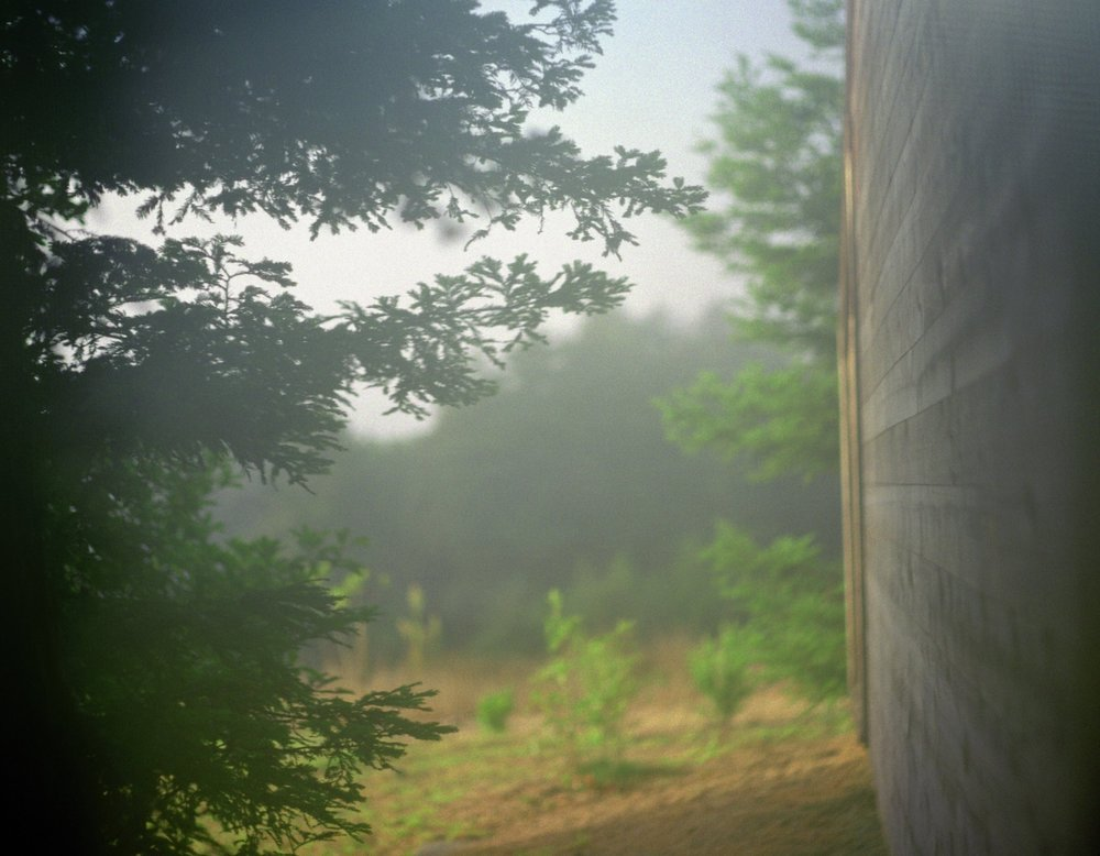 Untitled (Tree Beyond House), 2002   / archival pigment   print, 19   x 24   inches  ,   edition of 5 plus 2 AP