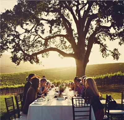 wine-country bachelorette.jpg