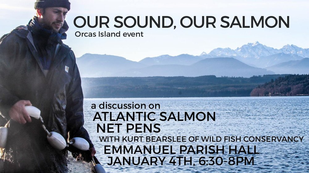 Our Sound, our Salmon Graphic.jpg