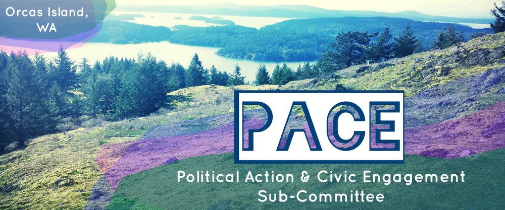 PACE-Mailchimp-Banner.jpg