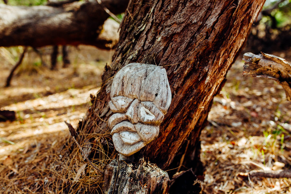 Solitaire Homestead quirky bits on the bushwalk