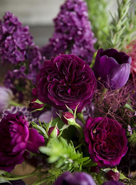 portobellorose-detail-vintagegarden1.jpg