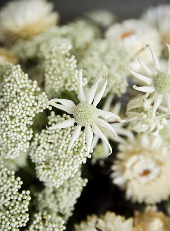 portobellorose-bouquet-detail-ausnative3.jpg