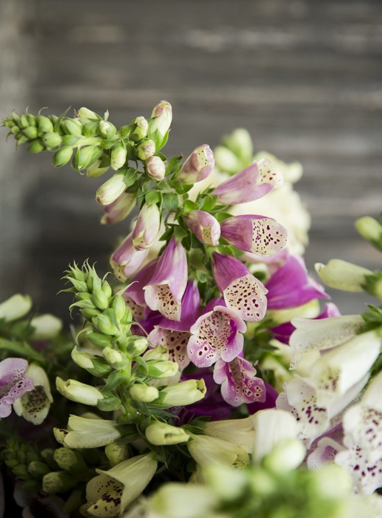portobellorose-bouquet-detail-enmasse4.jpg