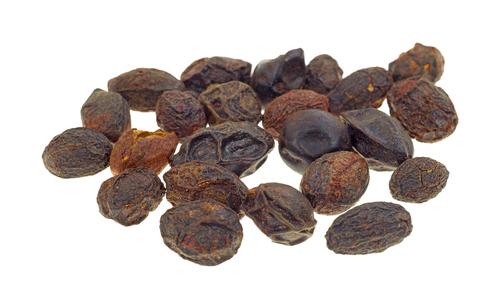 Saw Palmetto Berries Whole - Serenoa repens — Lisa Marie Holmes - Detox  Specialist, Herbalist, Holistic Health