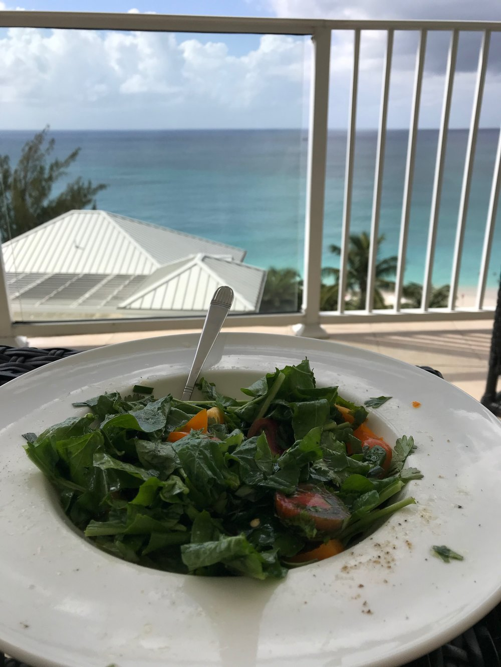 homemade fresh lunch with a view
