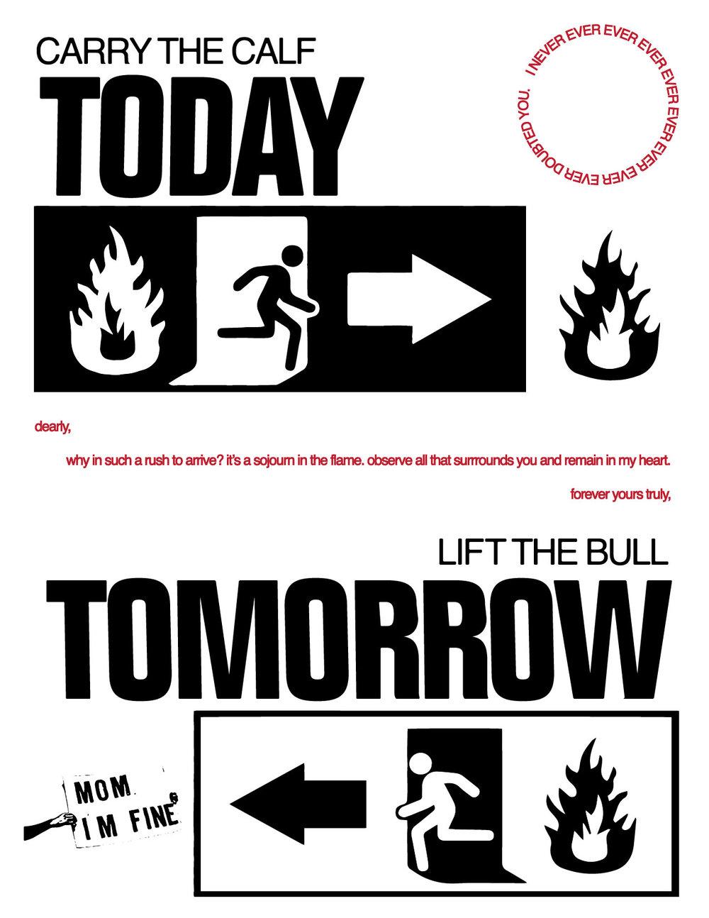 bull-01.jpg