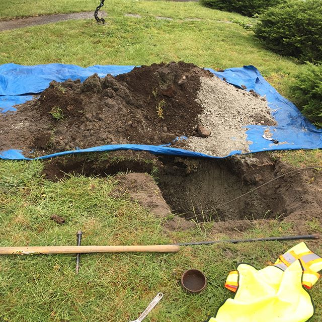 Trenchless water line renewal