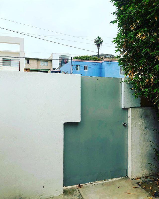 Morning views from inside the compound. Street dogs barking all around us. Playas de Tijuana, Baja, Mexico #nohotelnoproblem . . . . . . #streetdogsofmexico #playasdetijuana #playas #tijuana #mexico #bajacalifornia #southoftheborder #mornings #lockdown #travelphotography #travel #mascerveza #porfavor
