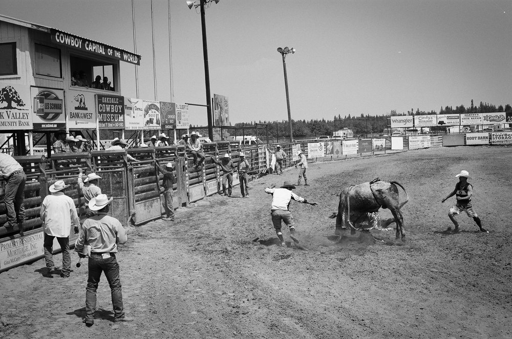 rodeo19.jpg