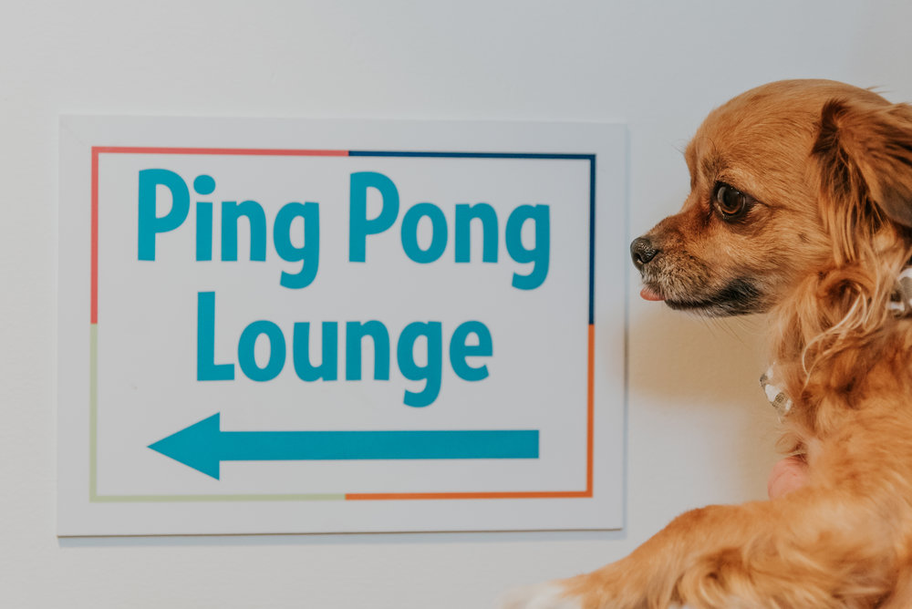 Oooh Ping Pong!