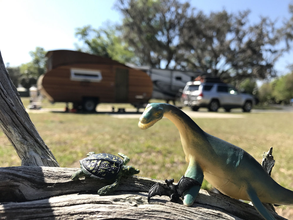 My traveling dinosaur found some friends!