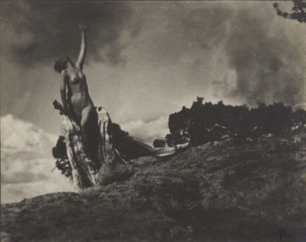 Anne Brigman,  Soul of the Blasted Pine , 1906