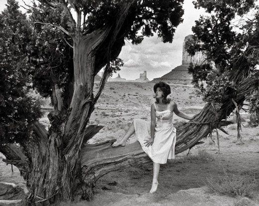 Cindy Sherman,  Untitled Film Still #43,  1979