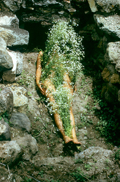 Ana Mendieta,  Untitled (Silueta Series, Mexico) , 1973–77